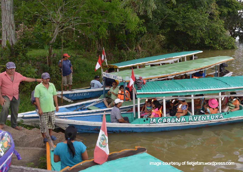 the-deep-amazonian-jungle-pucallpa-puerto-maldonado-pariwana-hostel-04