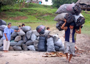 Man carrying charcoal to Tahuayo colectivo. Photo by Campbell Plowden/Center for Amazon Community Ecology.